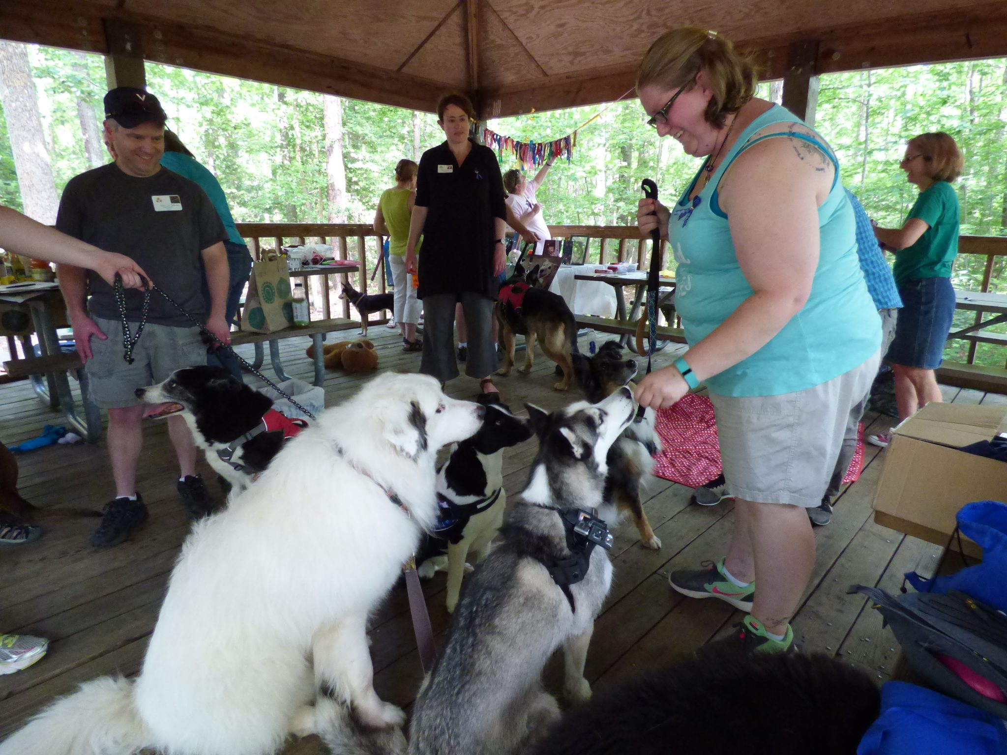 Tripawds, parties, Virginia
